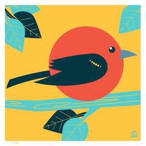 Scarlet Tanager 4x4 Limited Edition Print