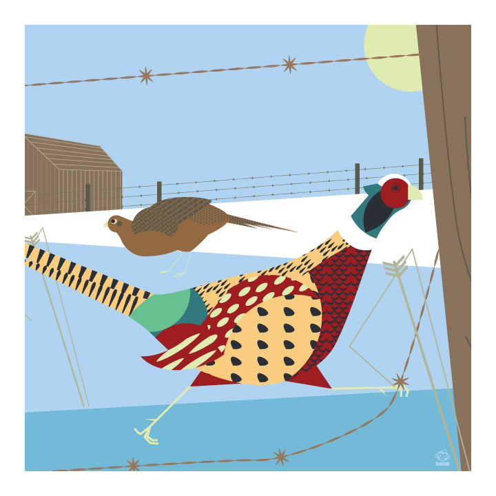 Midwest Morning Pheasants 10x10 Giclee Print