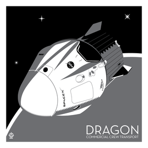 SpaceX Crew Dragon Capsule - 10x10 Giclee Print