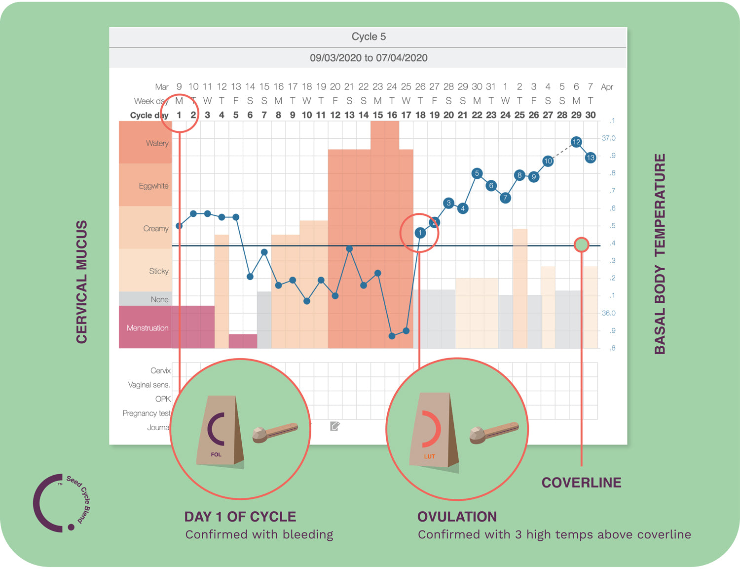 seed-cycle-blend-kindara-app-chart-fertility-awareness-basal-body-thermometer-temperature-seed-cycling