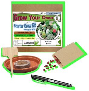 Grow Your Own Cactus Kit - Single Pen Kit