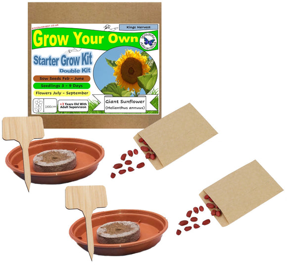 Grow Your Own Giant Sunflower Kit - Double Kit