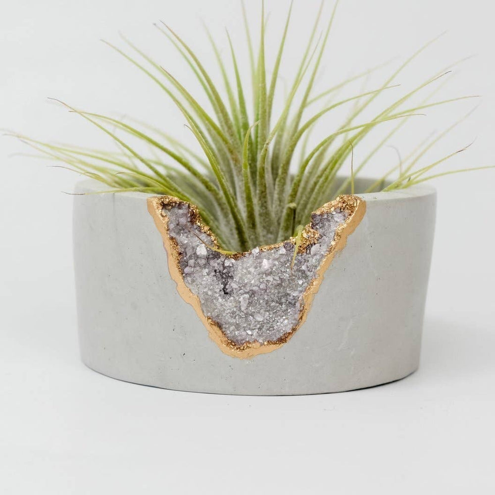 Lepidolite Geode Mini Planter With Air Plant