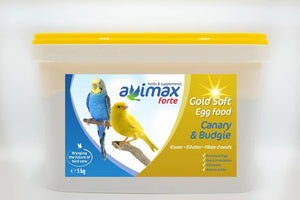 Gold Soft Canary & Budgie