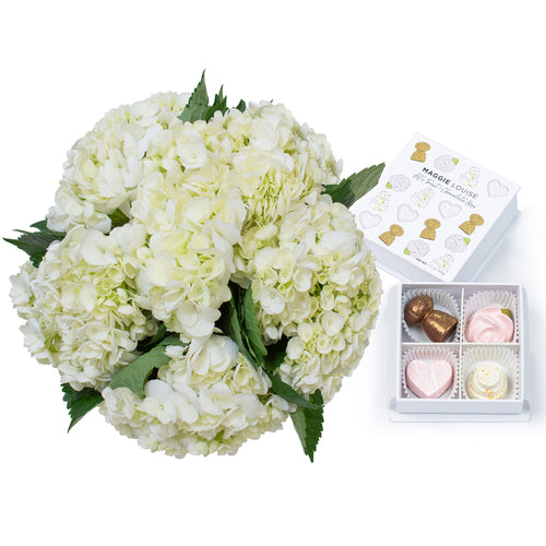 White Hydrangea Bouquet and Fun Champagne Chocolates - H.Bloom