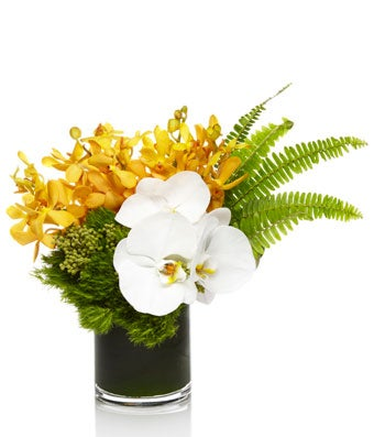White and Gold Orchid Varieties with Modern Grass Accents - H.Bloom