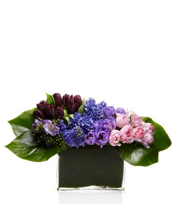 A Luxe Arrangement of Ombre Purple and Pink Seasonal Flowers - H.Bloom