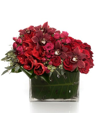 A luxury arrangement of all red premium blooms in an envelope vase - H.Bloom