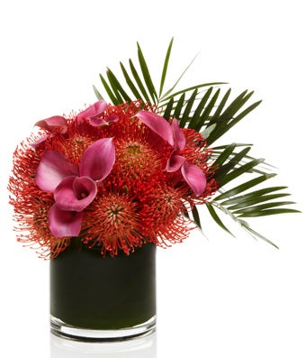 A fiery Arrangement of Pincushion Protea and Pink Calla Lilies - H.Bloom