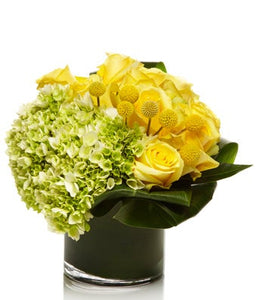 A Luxury Arrangement of Green Hydrangea and Yellow Roses - H.Bloom