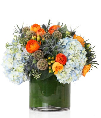 A lush mix of Blue Hydrangea and Orange Ranunculus  - H.Bloom