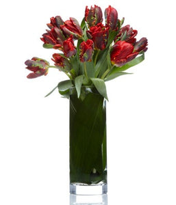 Exotic Red Tulip Arrangement - H.Bloom