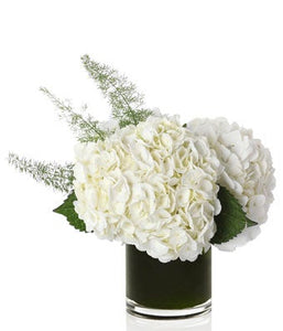 A classic arrangement of all-white hydrangea and a touch of soft greens arranged in a glass vase.
