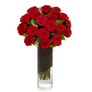 2 Dozen Red Roses in Vase - H.Bloom