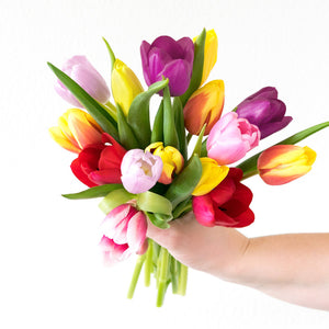 15 stems of seasonal tulips in a variety of colors- H.Bloom