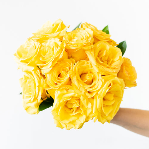 An arrangement of 12 premium  bright yellow roses.