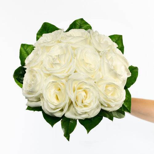 12 Premium White Roses  - H.Bloom