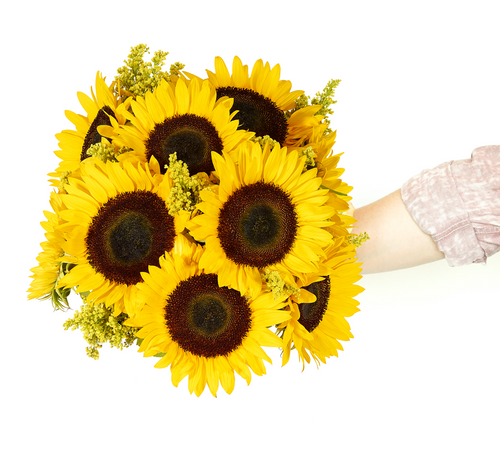Premium Sunflower Bouquet