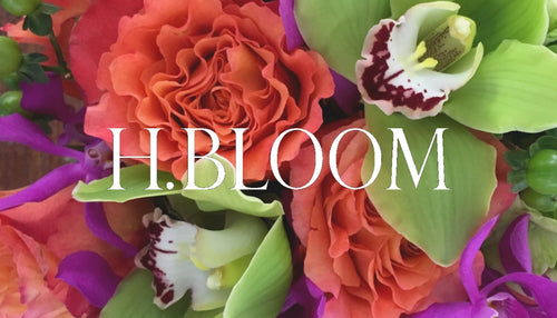 Just Because Gift Card - H.Bloom