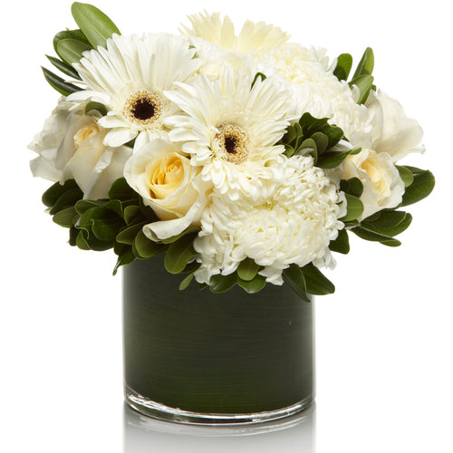 A mixed arrangement of white roses, daisies, and mums accented with greens.