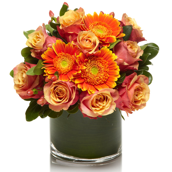 A Fresh Arrangement of Orange/Coral Roses and Daisies - H.Bloom