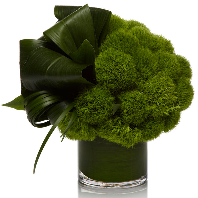 A Unique Arrangement of Green Dianthus and Aspidistra Greens - H.Bloom
