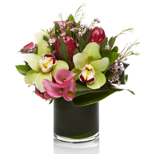 Chic Pink Calla Lillies and Lime Green Orchid Floral Arrangement - H.Bloom
