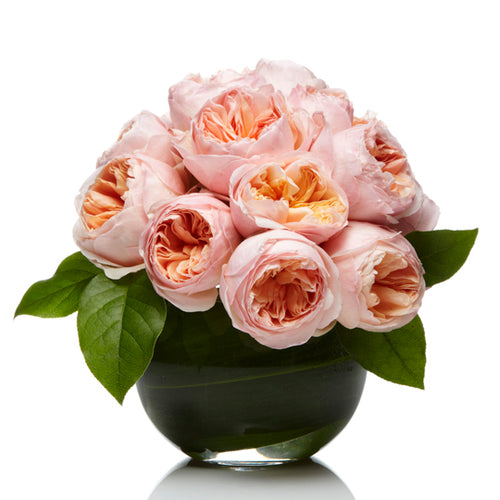 A lush arrangement of Peach Garden Roses- H.Bloom