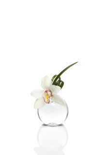 Cymbidium Bud Vase Set of 8