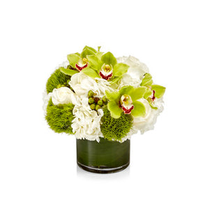 Luxury Arrangement White Hydrangea and Lime Green Orchids and Berries - H.Bloom