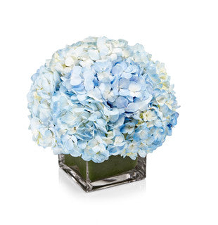Luxury Blue Hydrangea Arrangement- H.Bloom
