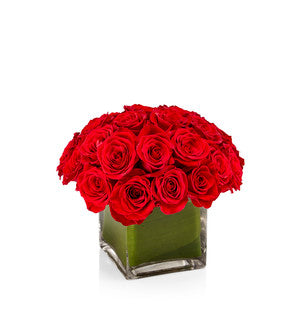 A low arrangement of 18 Premium Red Roses - H.Bloom