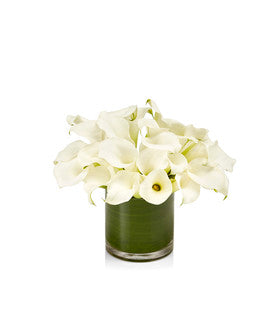 A timeless arrangement of premium Tibet white mini calla lilies designed artfully in a cylinder glass vase.