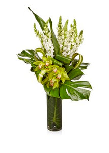 A Luxury Arrangement of Green Cymbidium Orchids and White Snapdragons- H.Bloom