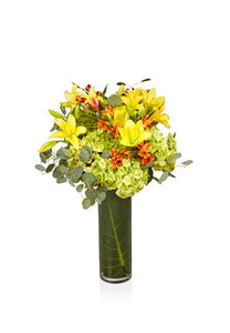A Chic Orange, Yellow, and Green Arrangement - H.Bloom
