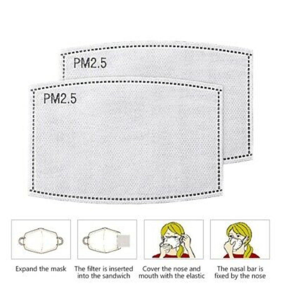 PM 2.5 Face Mask Filters - 10 Pack (Will ship with in 24 hours)