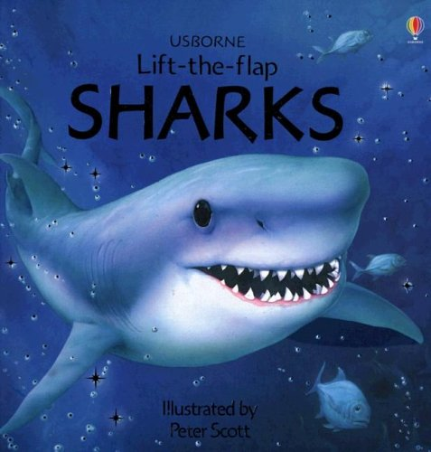 Sharks (Usborne Lift-the-Flap Learners)