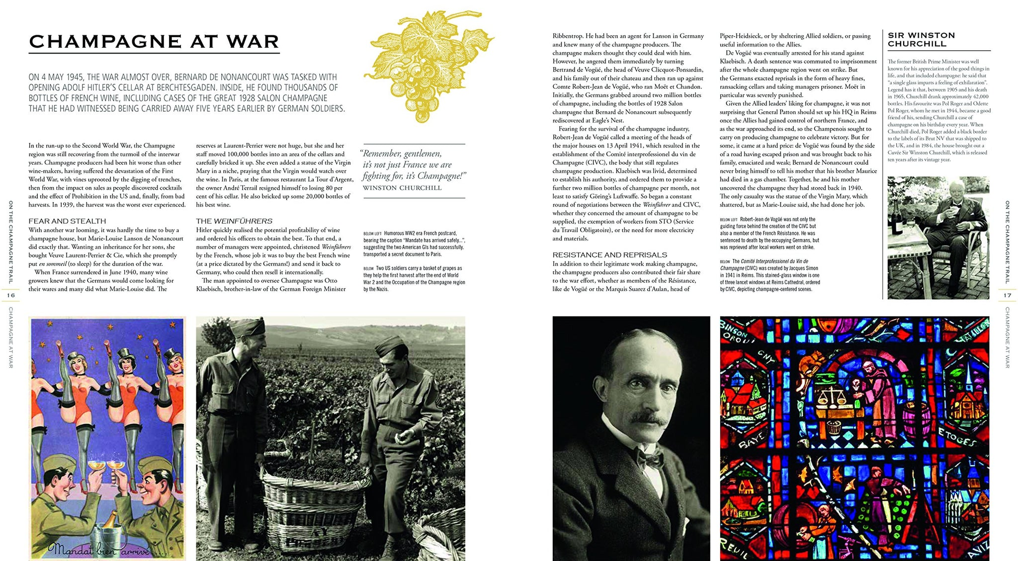 The Treasures of Champagne: A Journey of Discovery into the Wine of Celebration Par Excellence
