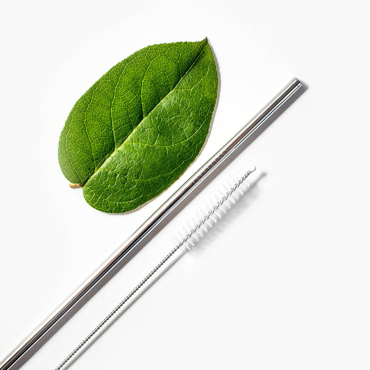 Reusable Stainless Steel Drinking Straws (Pack of 3)