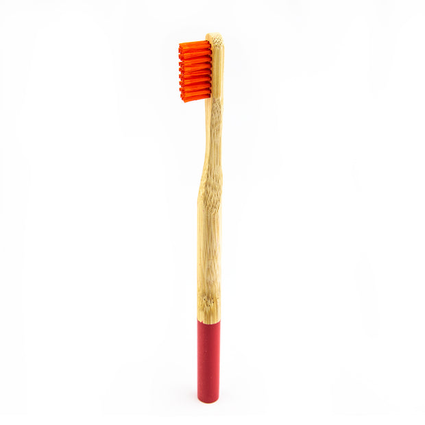 Multicolored Bamboo Toothbrushes