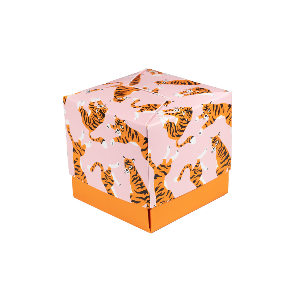 Cute Tigers Gift Box