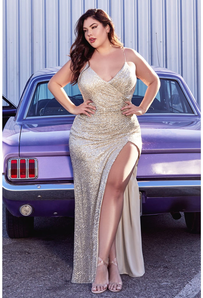 Curvy Beauty evening and wedding dresses for plus size up to 6x
