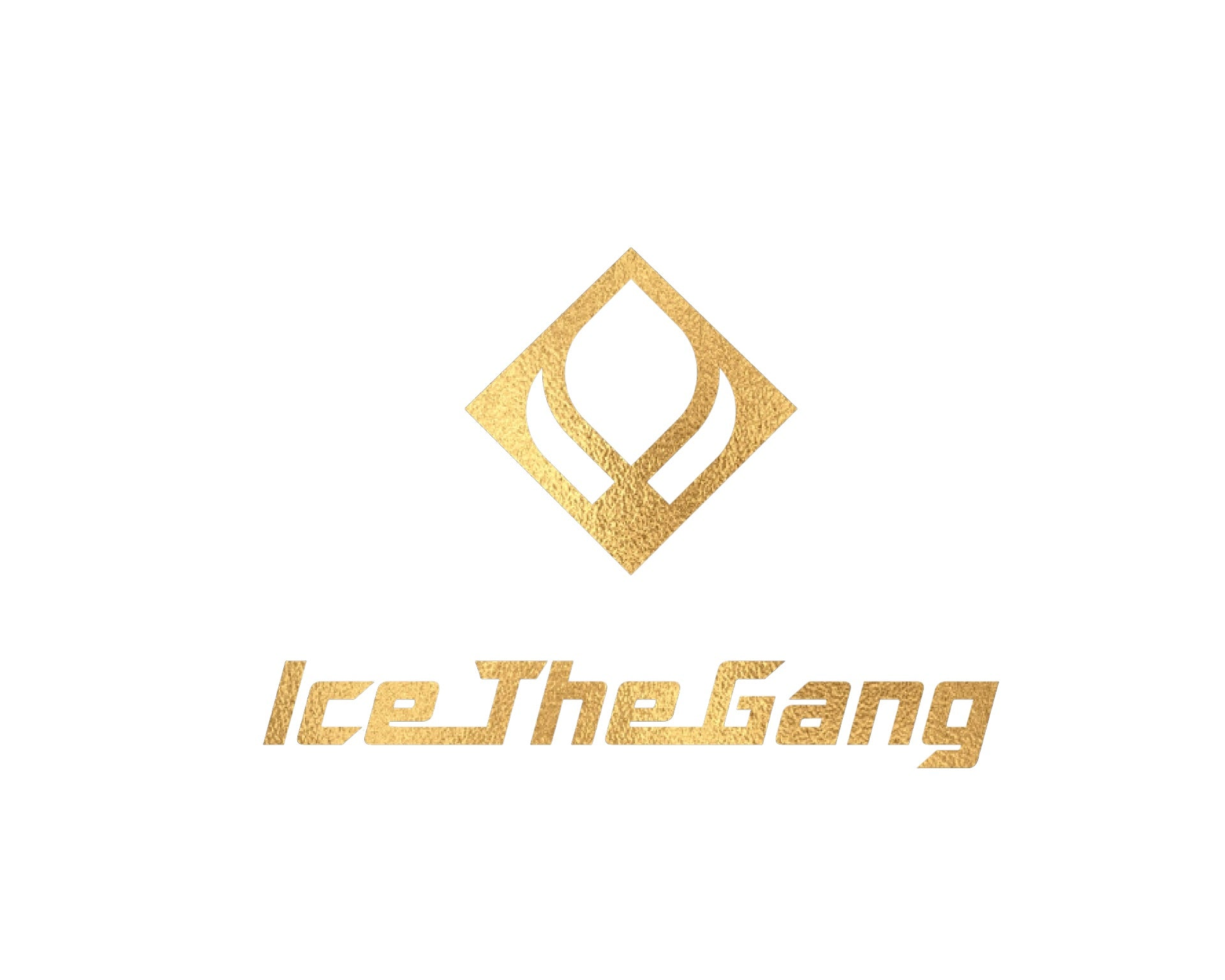 Create Your Own Piece - IceTheGang