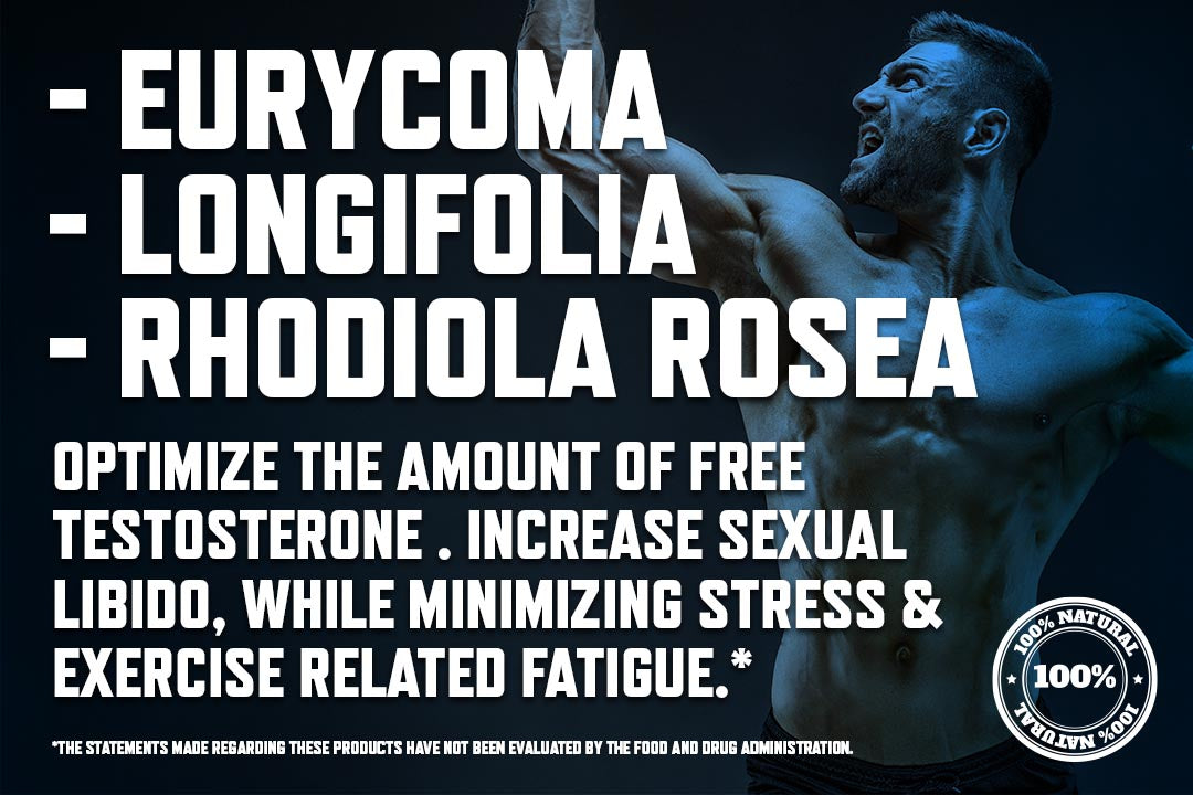 ingredients revive body fuse testosterone booster