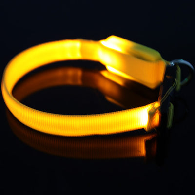 Glow Pet Collar-Sona's Wonders