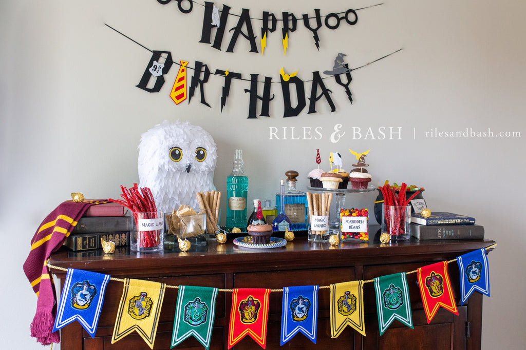 Riles & Bash Snowy White Owl Pinata_Harry Potter Pinata_pinata_Harry Potter Birthday Party Supplies and Ideas_piñata