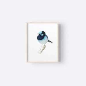 winter-owls - Superb Blue Fairy Wren Watercolour Print - Winter Owls - Fine Art Print