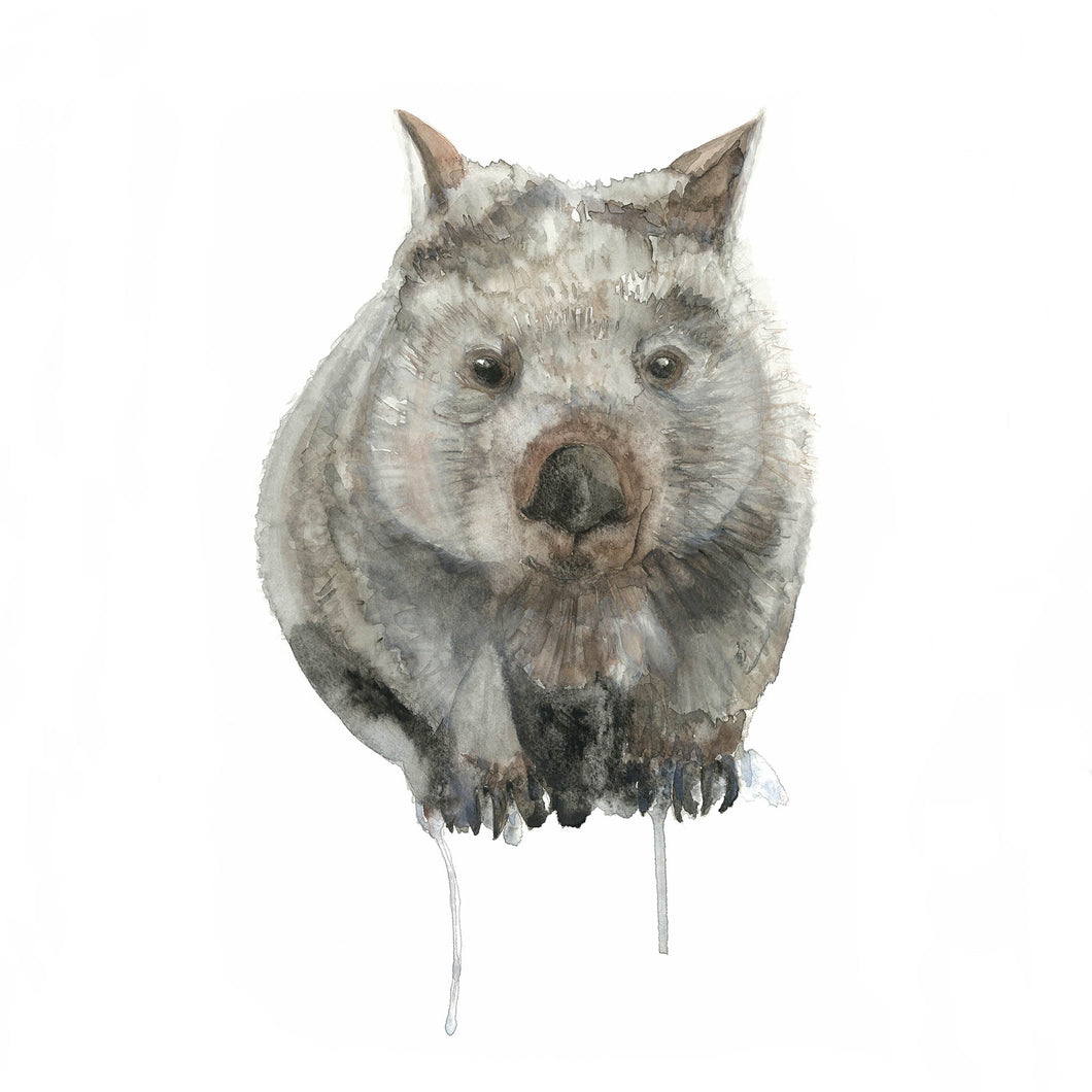 Wombat Watercolour Print - Winter Owls