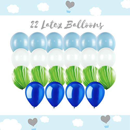 1st Birthday Boy Decorations | Rain Meadow