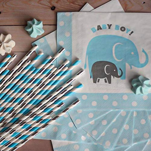Boy Baby Shower Party Supplies | Elephant Theme
